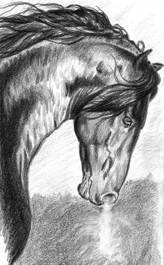 """War Horse,  8"""" x 10"""" hand signed matted print of the original Graphite. Printed on acid free, archival papers. Matted in white and ready for a 11"""" x 14"""" frame. Protected by a clear acid free bag and shipped flat, Etsy, $19.00"""