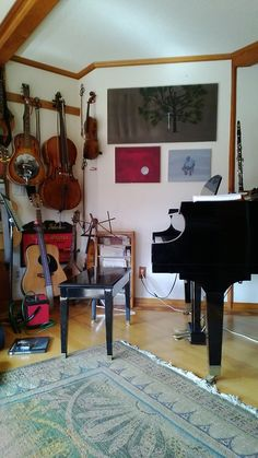 Tidy little music room. I leave my windows wide open just about 24-7, year-round. May-hap something like a huge glass armoire in which to hang various violins and guitars...