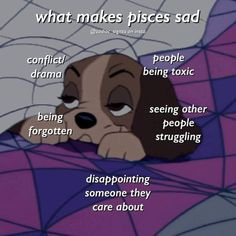 Pisces Lover, Aries And Libra, Astrology Pisces, Zodiac Signs Pisces, Pisces Facts, Zodiac Memes, Zodiac Star Signs, Zodiac Facts, Pisces Fish