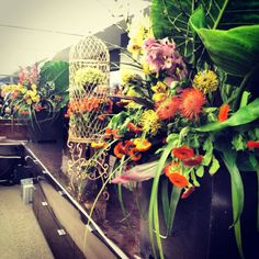 Oversized tropical flowers by Floralia and birdcages