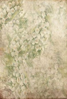 Vintage Shabby Grunge White Flowers Photo Studio Backdrop GA-61 – Dbackdrop