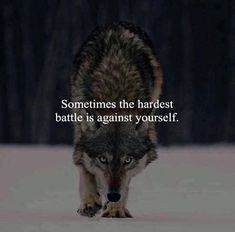 Quotes : The hardest battle is against yourself. Positive Quotes : The hardest battle is against yourself.Positive Quotes : The hardest battle is against yourself. Wisdom Quotes, True Quotes, Words Quotes, Sayings, Quotes Images, Hd Images, Free Images, Strong Quotes, Positive Quotes