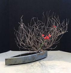 Ikebana Flower Arrangement, Ikebana Arrangements, Beautiful Flower Arrangements, Floral Arrangements, Flower Names, Flower Art, Cactus Flower, Bonsai, Ikebana Sogetsu