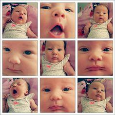 Baby fotografie collage newborn
