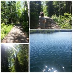 nature walk woods lake shimmering pretty outdoors love mom trees paths logosland camping weekend