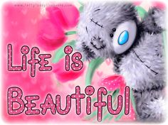 "Tatty teddy ""Life is Beautiful"""
