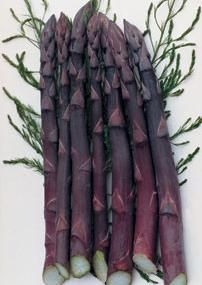 Purple Passion Asparagus Sweet, mild, and nutty flavor. With 20% more natural sugar, burgundy asparagus has sweeter stalks than green asparagus! These vitamin-rich spears are so tender, you can eat them right out of your garden. You'll love the unique, nutty flavor. Stalks turn green when cooked. Cold hardy and heat-tolerant. Harvest from early April through mid May. Self-pollinating. Sold in pkgs. of 10. zones 3-10