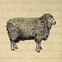 Lincoln Ram Sheep Animal Graphic Image Printable Digital Download Antique Clip Art Jpg Png Eps 18x18 HQ 300dpi No.3553 @ vintageretroantique.etsy.com