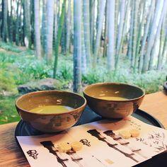 Enjoy a matcha in front of a bamboo grove is possible in Kamakura. Don't miss that !  Pour profiter d'un bon matcha devant une forêt de bambous rendez-vous à Kamakura ! Ne manquez pas cette occasion de prendre une pause au milieu d'une journée de visites !  #japon #japan #travelblog #kamakura #kamakurajapan #hokokuji #bamboogrove #temple #matcha #matchalovers #havearest #relaxation #zengarden #zen #disconnect #naturelover #icu_japan #japangram #igersjapan #discoverjapan #visitjapanfr #eos70d…