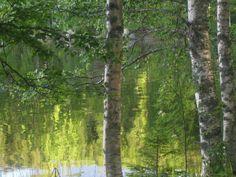 Kuvajaiset vedessä. Suomi Finland