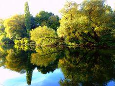 River Nišava