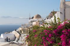 Aria Lito and Santorini Sunsets Santorini 2017, Santorini Sunset, Greek Islands, Taj Mahal, Travel, Trips, Greek Isles, Viajes, Traveling