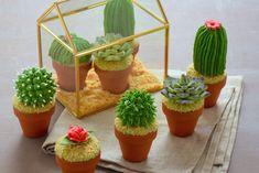 Cactus mania - Cupcakes cactus