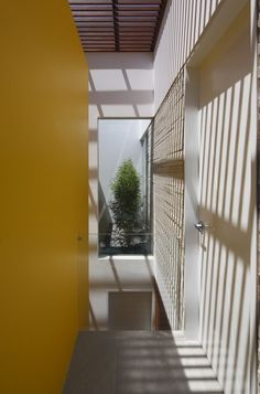 Casa P12  / Martin Dulanto