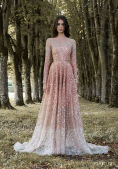 Paolo Sebastian | PSAW1701 - Dégradé gown with dragonfly wing mosaic embroidery and beadwork