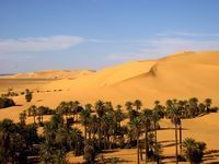 79 best images about 1980 oasis et + on Pinterest | Search, Deserts and Landscapes