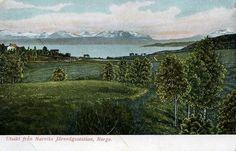 Nordland fylke utsikt fra jernbanestationen ca 1900 kolorert kort