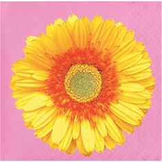 20 Beautiful Blossoms Party Supplies And Decorations Ideas Party Supplies Creative Converting Spring Party Decorations