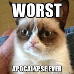 People I Want to Punch in the Throat: The Mayans Cat Jokes, Hilarious Jokes, Cats Humor, Hilarious Pictures, Funny Humor, Funny Photos, Angry Cat Memes, It's Funny, Sarcasm Humor