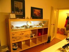 IKEA Reptile Enclosures | Busy Procrastinating: Creative and chic IKEA hacks