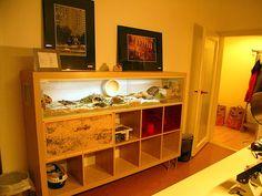 IKEA Reptile Enclosures | Busy Procrastinating: Creative and chic IKEA hacks