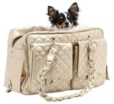 Doggie Diva offers upscale, luxury dog purse carriers in many styles and colors. If you're looking for the best designer dog purses online, check out our online boutique! Small Pet Carrier, Dog Carrier Purse, Dog Carrier Bag, Dog Purse, Chi Chi, Designer Dog Carriers, Diy Dog Crate, Pet Bag, Dog Boutique