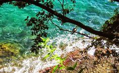 Dal litorale si arriva alla montagna in poco tempo, attraverso salite rocciose e sentieri immersi nel verde, dove ogni tanto si scorgono ruscelli, e piane verdissime e coperte di fiori.  Tutto questo senza perdere di vista il mare, che è sempre al nostro fianco o alle nostre spalle, e il panorama da qui lo rende ancora più affascinante.