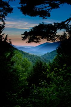 Peeking Through by Bryan Dore, via 500px; Appalachian Trail near Danby, Vermont