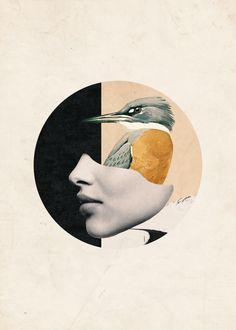 collage art / bird Canvas Print by Art Du Collage, Collage Design, Collage Illustration, Digital Collage, Dada Collage, Framed Art Prints, Canvas Prints, Poster Prints, Pop Art