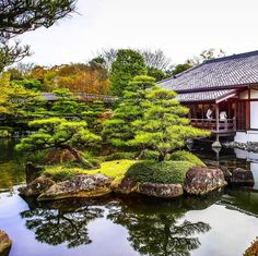 Breathtaking #traditional #Japanese #garden of the #Himeji #Castel  #好古園 #travel #japan #nature #happiness #love #旅 #日本 #幸せ#自然 #peace #beauty #公園 #architecture #architecturephotography #姫路城