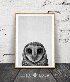 Owl Print, Woodlands Decor, Wilderness Wall Art, Modern Abstract Black and White, Animal Print, Printable Art, Minimal, Woodlands Owl