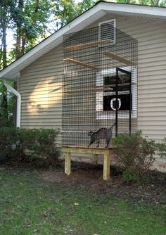 Window cat door and cat aviary for inside cats.. could even keep the cat box out there.