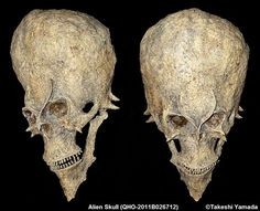 Space Alien Skull   This is one of the mysterious fossilized humanoid skull found in Africa in 2011. Although the external size and the brain cavity size of this skull are similar to those of the modern human, it is actually 18 million years old. This means this humanoid is much older than any oldest skulls of humans on this planet including Lucy (Australopithecus or AL 288-1, which is estimated to have lived 3.2 million years ago) or Ardi, (the earliest known hominid date to 4.4 million…