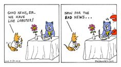Live Lobster [The Pawses, web comic]