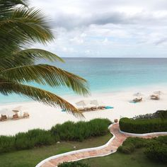 Beautiful white sandy beaches and palm trees to match!  #TheHatOnTheGo #THLinAnguilla
