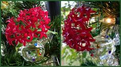 DIY mini-vase tree ornaments are perfect gifts for the gardeners on your list. they can add fresh flowers to their tree! Christmas Ornaments To Make, Homemade Christmas, All Things Christmas, Christmas Holidays, Christmas Wreaths, Christmas Bulbs, Christmas Decorations, Christmas Candy, Holiday Decorating
