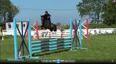 Sierra competing in her first show, and also her first time on grass. VIDEO: https://www.youtube.com/watch?v=aTJiUcHATsc #lovehorses #loveirishhorses