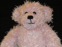Teddybär Balerina