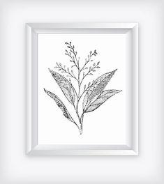 Vintage Floral Illustration Art, Monochromatic Printable, Gray Botanical Print,  Digital Print, Black White Poster, Studio Design Home Decor