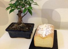 Cuarto mallorquín para #Mycook http://www.mycook.es/cocina/receta/cuarto-mallorquin