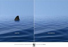 WWF add