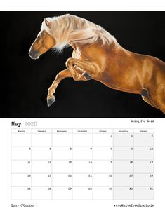 Tony O Connor 2020 Equine Art Calendar Limited Edition Art Calendar, Equine Art, Life Is Good, Moose Art, Sketches, Horses, Artist, Animals, Image