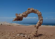 This is a Fulgurite. It is what happens when sand gets struck by lightning.