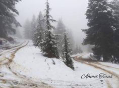 Çamlıyayla ve Gülek Kar Fotoğrafları (Karışık) | Sayfa 22