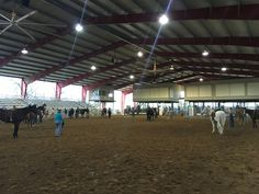Texas horsemanship clinic!!  Www.petercampbellhorsemanship.com