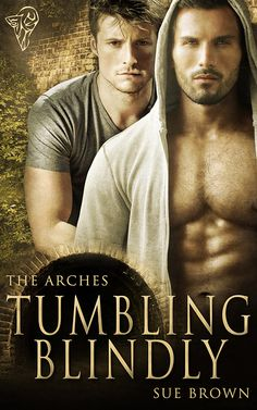 Fortune Favours the Romantic: Have you read The Arches series