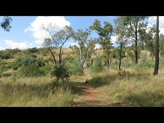 The hiking trail is located in Irene, close to Pretoria, on the . Visit South Africa, The Gr, Pretoria, Africa Travel, Guide Book, Hiking Trails, Travel Guide, Country Roads, Explore