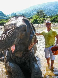 Playing with elephants in Northern Thailand.