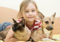 #Pies i #kot pod jednym dachem