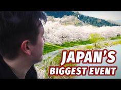 (15) Experiencing Japan's Biggest Annual Event   Cherry Blossom Season - YouTube